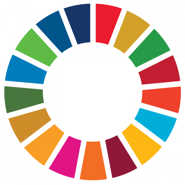 SDG color wheel
